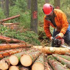 Mitgliederversammlung des Forstbetriebsgemeinschaft