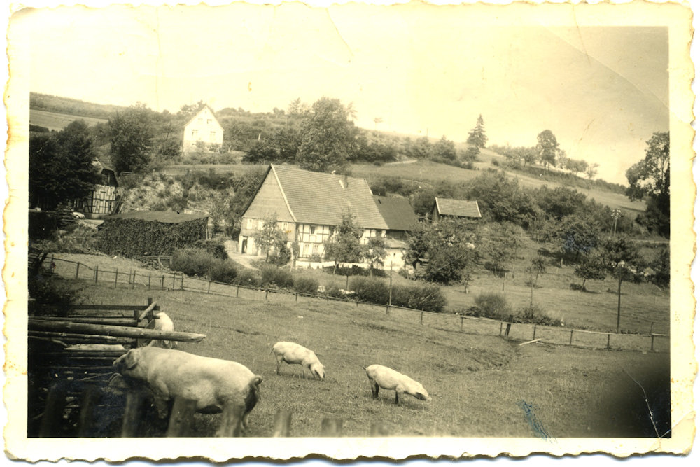 Hof Wigger 1952 (ehemals Josef Rump II) an der Landstraße nach Helden